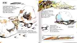 hanshen science nature_29