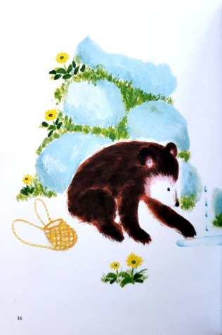 bear set_9